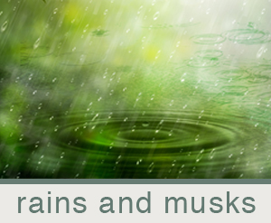 bj-scents-rains and musks